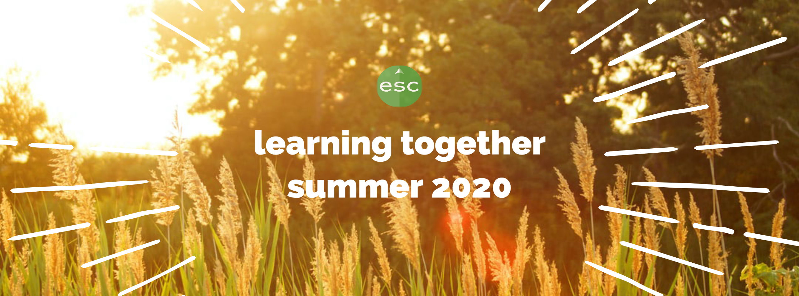 graphic: learning together - summer 2020