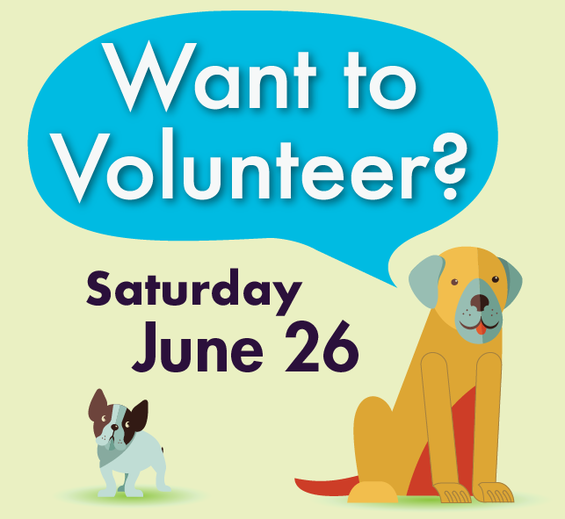 Image of Graphic with Dog and Volunteer Request