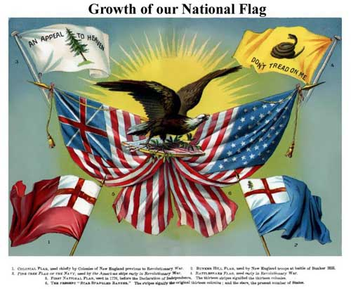 Growth of our Flag